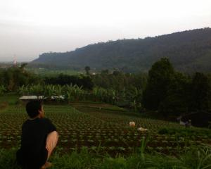 dari puncak bukit kemuning